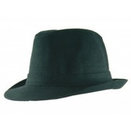 Doell-trilby