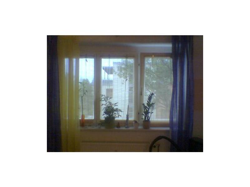 bambusrollo schwarz stunning x cm bambusrollo natur bambus holzrollo jalousie vorhang rollo. Black Bedroom Furniture Sets. Home Design Ideas